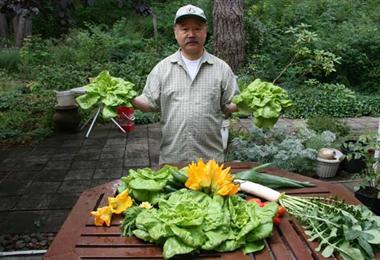 Mayne Island Produce