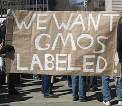 GMO Label In California
