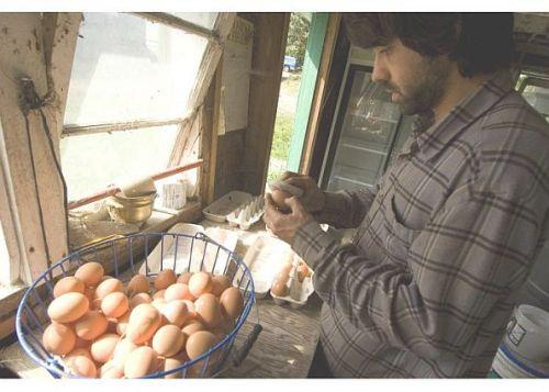 Jeremys-Eggs