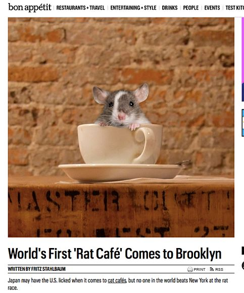 rat-cafe-bon-appetit cropped