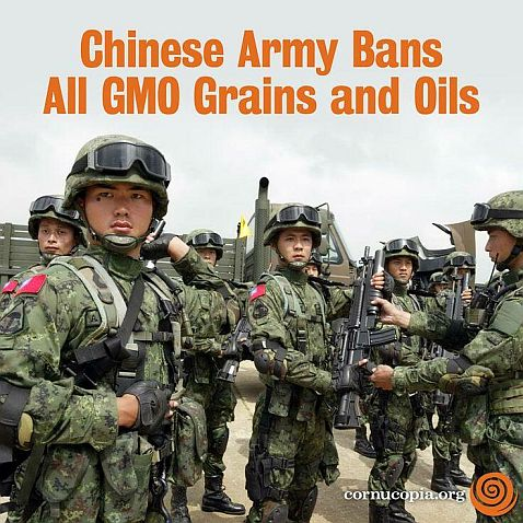 chinese army bans gmo reduced